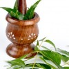 Ayurvedic System - herbal preparation