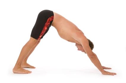 Downward Facing Dog - Adho Mukha Svanasana -Yoga Positions Guide